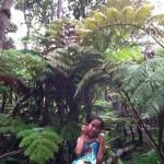 ハワイ島の旅(熱帯雨林のラバチューブ!?)